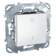 Двухполюсовый одноклавишный выключатель 16A белый